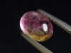 Tourmaline bicolor 1,46 Ct. oval cabochon rose & green Brazil