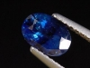 Blauer Saphir 1,43 Ct. - 7 x 5 mm Oval - Sri Lanka
