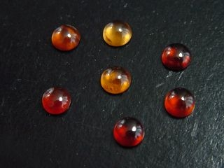 Hessonit Granat Lot 7,92 Ct. Rund Cabochons 6 mm