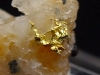 Gold kristallin in Quarz / Goldstufe 19 mm Brusson, Val d'Aosta, Italien